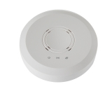 300Mbps Ceiling Wireless AP(WAP350)